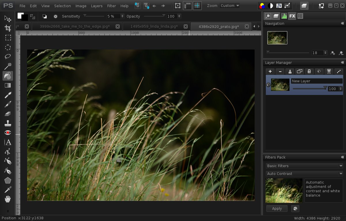 Paintsupreme Powerful Commercial Image Editor For Linux